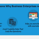 4 Important Reasons Why Business Enterprises need an ERP System